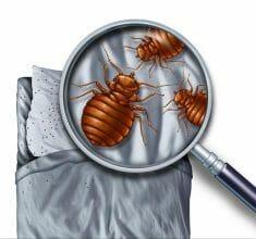 Pest Control Applications